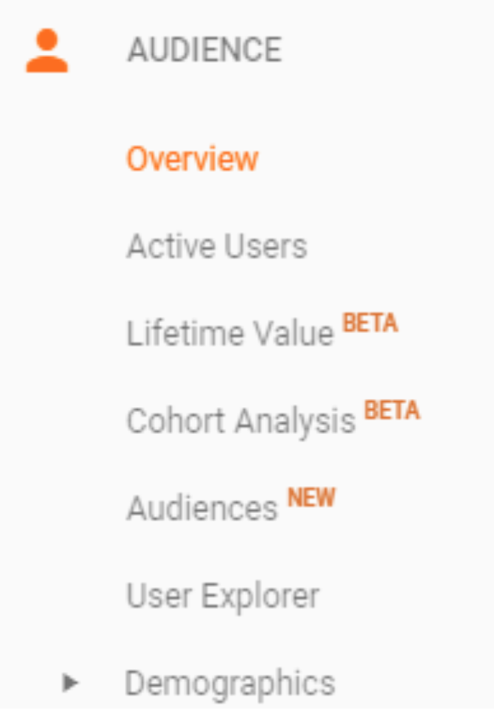 A Beginner's Guide to Google Analytics - Audience