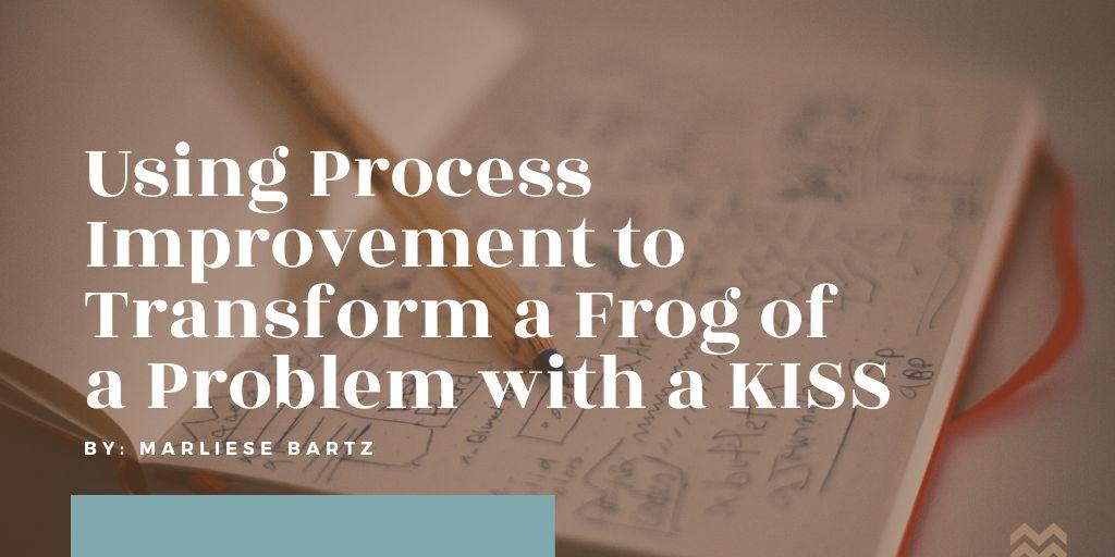 Process-Improvement-Marliese Bartz-HH