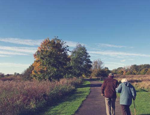 Hera Hub Member Spotlight – Supporting Seniors